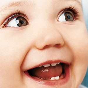 A chegada dos dentinhos