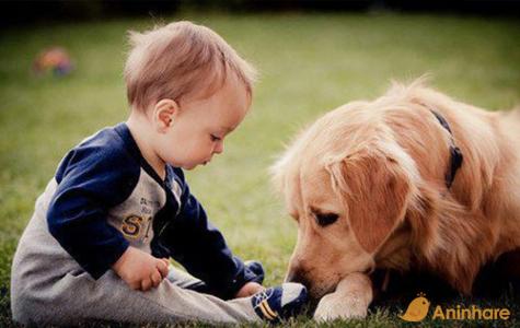 Pet faz bem ao Bebê!